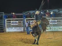 Clark okręgu administracyjnego rodeo i jarmark Obraz Royalty Free