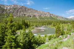 Clarks Forks Yellowstone River, Wyoming, USA Royalty Free Stock Photo