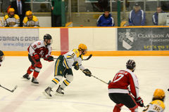 Clarkson #11 in NCAA Hockey Game. Feb. 9, 2013 - Clarkson #11 Todd Christian in NCAA Hockey Game between Clarkson University and Rensselaer Polytechnic Institute Royalty Free Stock Images