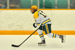 Clarkson #13 in NCAA Hockey Game Stock Images