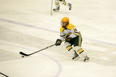 Clarkson #14 in NCAA Hockey Game Stock Image