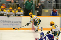 Clarkson #14 in NCAA Hockey Game Royalty Free Stock Photography