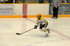 Clarkson #14 in NCAA Hockey Game Stock Images