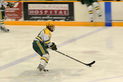 Clarkson #14 in NCAA Hockey Game Stock Photography