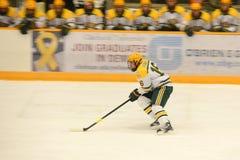 Clarkson #16 in NCAA Hockey Game Royalty Free Stock Photo