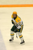 Clarkson #17 in NCAA Hockey Game Royalty Free Stock Image