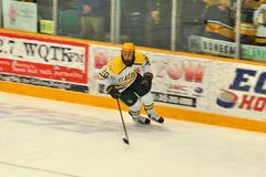 Clarkson #20 en juego de hockey del NCAA Imágenes de archivo libres de regalías