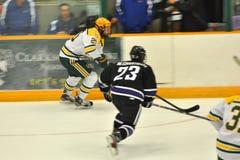 Clarkson #20 en juego de hockey del NCAA Imagen de archivo libre de regalías
