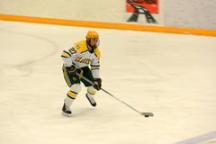 Clarkson #27 in NCAA Hockey Game Royalty Free Stock Photography