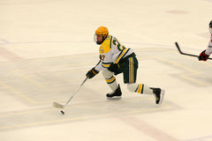 Clarkson #27 in NCAA Hockey Game Stock Photography