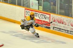 Clarkson #32 in NCAA Hockey Game Stock Photos