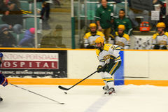Clarkson #37 in NCAA Hockey Game Stock Images