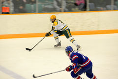 Clarkson #9 in NCAA Hockey Game Royalty Free Stock Photos