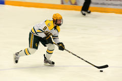 Clarkson #9 in NCAA Hockey Game Stock Image