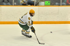 Clarkson Alex Boak in NCAA Hockey Game Stock Photos