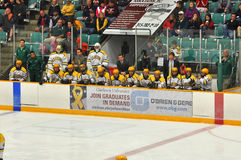 Clarkson Bench in NCAA Hockey Game Stock Photography