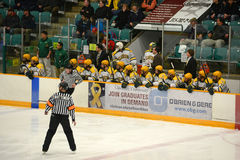 Clarkson Bench in NCAA Hockey Game Royalty Free Stock Photography