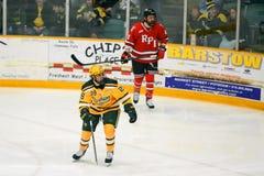 Clarkson #28 en juego de hockey del NCAA Imagenes de archivo