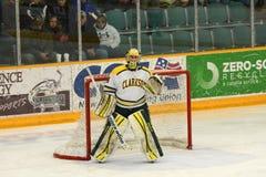Clarkson Goalie #34 in NCAA Hockey Game Stock Image