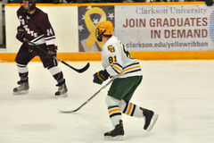 Clarkson Joe Zarbo in NCAA Hockey Game Royalty Free Stock Photo