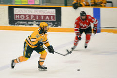 Clarkson #12 in NCAA Hockey Game Royalty Free Stock Photos