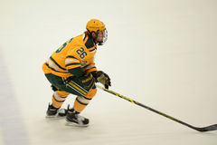 Clarkson #26 in NCAA Hockey Game Royalty Free Stock Photography