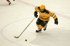 Clarkson #29 in NCAA Hockey Game Stock Photography
