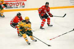 Clarkson #27 in NCAA Hockey Game Stock Photography