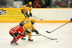 Clarkson #27 in NCAA Hockey Game Stock Images