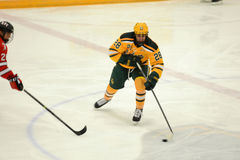 Clarkson #28 in NCAA Hockey Game Royalty Free Stock Photography