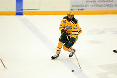 Clarkson #28 in NCAA Hockey Game Royalty Free Stock Images