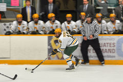 Clarkson Nick Tremblay in NCAA Hockey Game Royalty Free Stock Photos