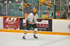 Clarkson Nik Pokulok in NCAA Hockey Game Stock Photo