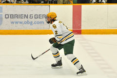 Clarkson Nik Pokulok in NCAA Hockey Game Royalty Free Stock Photography