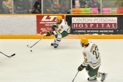 Clarkson players in NCAA Hockey Game Royalty Free Stock Photo