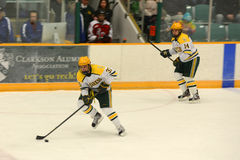 Clarkson Players in NCAA Hockey Game Stock Image
