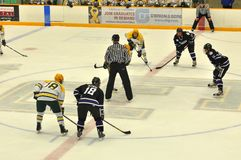 Clarkson University in NCAA Hockey Game Stock Photography