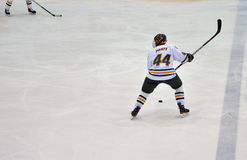 Clarkson University player in NCAA Hockey Game Royalty Free Stock Photos