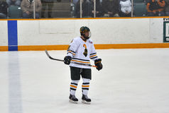 Clarkson University player in NCAA Hockey Game Royalty Free Stock Photography