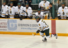 Clarkson University player in NCAA Hockey Game Royalty Free Stock Images