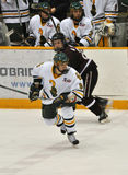Clarkson University player in NCAA Hockey Game Royalty Free Stock Photo