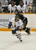 Clarkson University player in NCAA Hockey Game Royalty Free Stock Photo