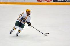 Clarkson University player in NCAA Hockey Game Stock Photos