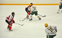 Clarkson University player in NCAA Hockey Game Stock Images