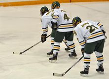 Clarkson University players in NCAA Hockey Game Stock Photography