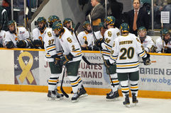 Clarkson University players in NCAA Hockey Game Royalty Free Stock Photo