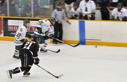 Clarkson University players in NCAA Hockey Game Royalty Free Stock Photos