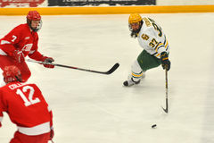 Clarkson Will Frederick in NCAA Hockey Game Royalty Free Stock Image