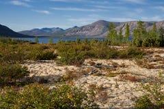 Claro con el musgo en el lago Lago Labynkyr Imagenes de archivo