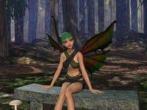 Claro del bosque Imagen de archivo libre de regalías
